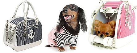 Модные сумки для собак