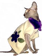 Одежда для кошки из ателье CatsCorner