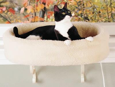 Термокровать для современной кошки