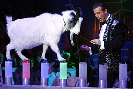 Karl Ferdinand Trunk и коза - грациозная артистка цирка