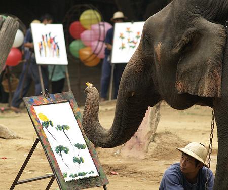 Слоны увлекаются живописью и спортом